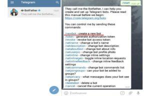 Как начать работу с ботом в Телеграме